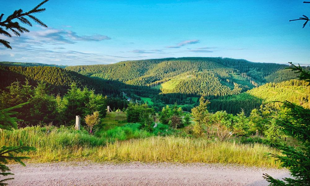 Thüringer Wald, Thüringen